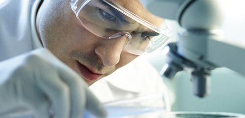 Conservación de células madre (servicio first)